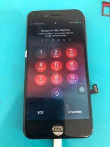 IPhone 7 не включается